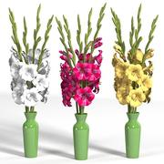 gladiolus elegant flower bouquet red white yellow high vase 3d model