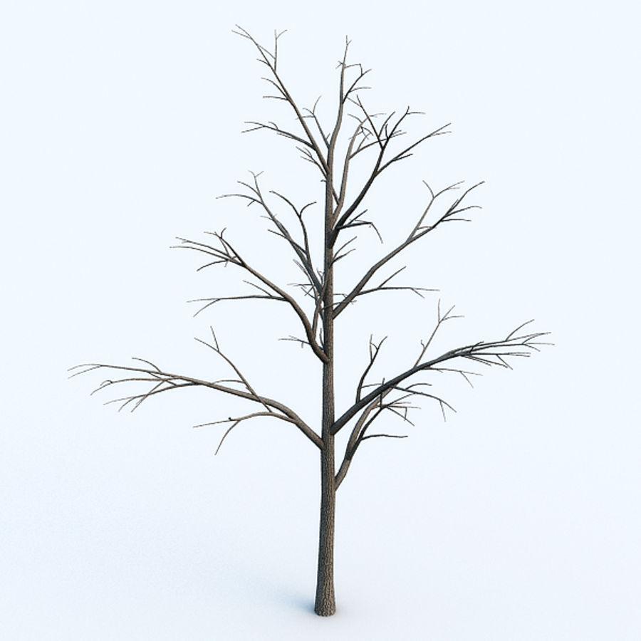 Drzewo # 2 royalty-free 3d model - Preview no. 2