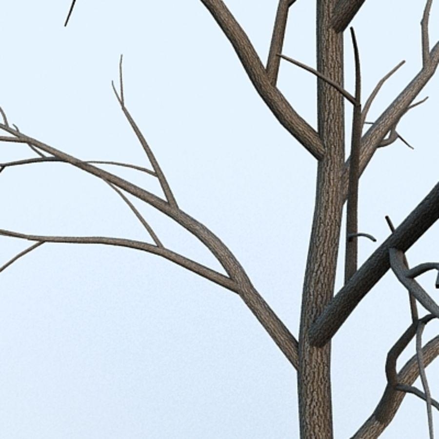 Drzewo # 2 royalty-free 3d model - Preview no. 3