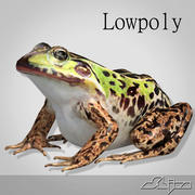 Grenouille 2 lowpoly 3d model