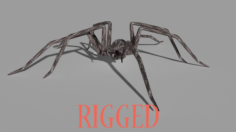 spider rig royalty-free 3d model - Preview no. 1