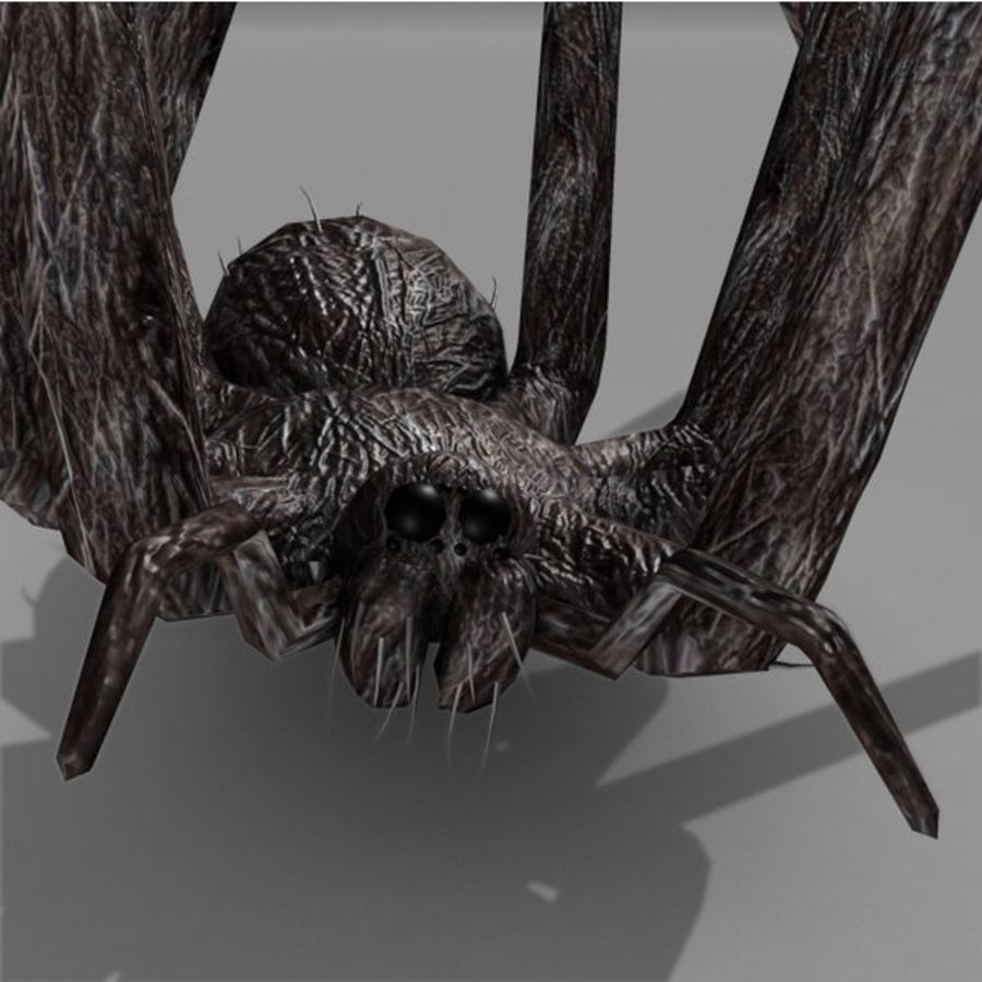 spider rig royalty-free 3d model - Preview no. 2