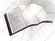 圣经 3d model