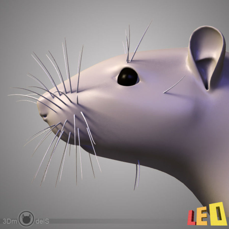Rato royalty-free 3d model - Preview no. 5