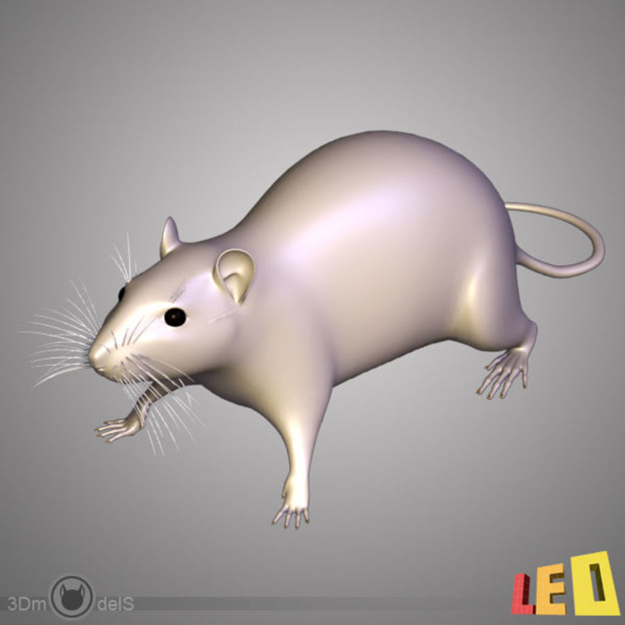 Rato royalty-free 3d model - Preview no. 1