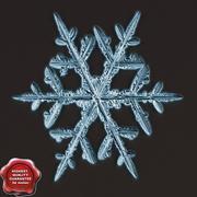 Snowflake V6 3d model