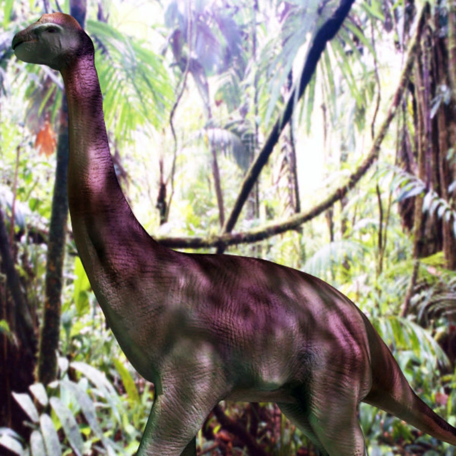 Brachiosauras (1) royalty-free modelo 3d - Preview no. 1