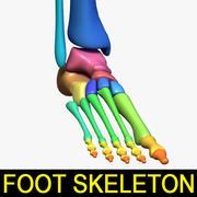 人体足骨骼 3d model