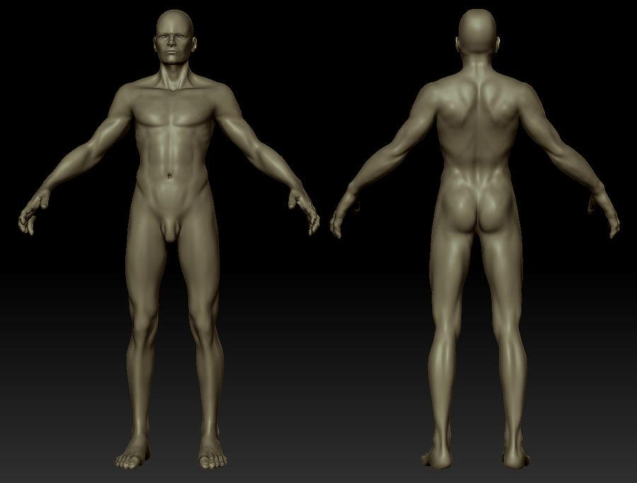 Человек Мужчина Бас Голый royalty-free 3d model - Preview no. 11
