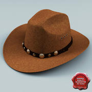 Ковбойская шляпа V2 3d model