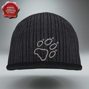 Inverno Hat Jack Wolfskin 3d model