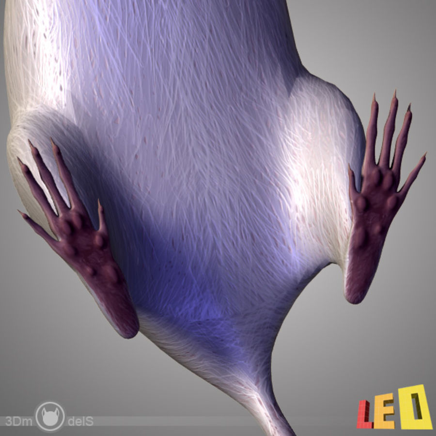 Rat (textured)) royalty-free 3d model - Preview no. 10