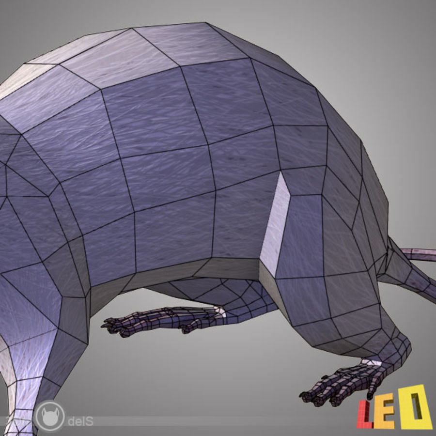 Rat (textured)) royalty-free 3d model - Preview no. 13