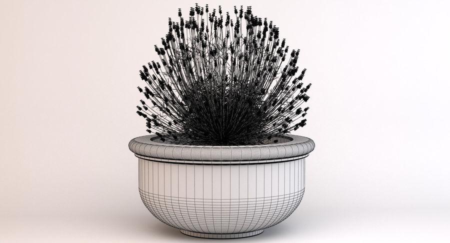 Deco Pot 204 royalty-free 3d model - Preview no. 8