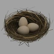 Bird nest with eggs 3d model