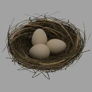 Fågelbo med ägg 3d model