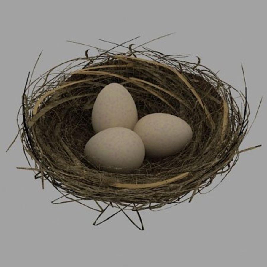 Nido de pájaro con huevos. royalty-free modelo 3d - Preview no. 1