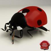 Ladybug Pose4 3d model