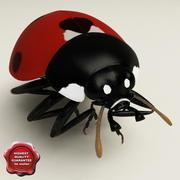 Ladybug Pose6 3d model