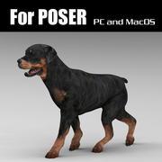 Rottweiler_for_Poser 3d model