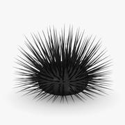 sea urchin1 3d model