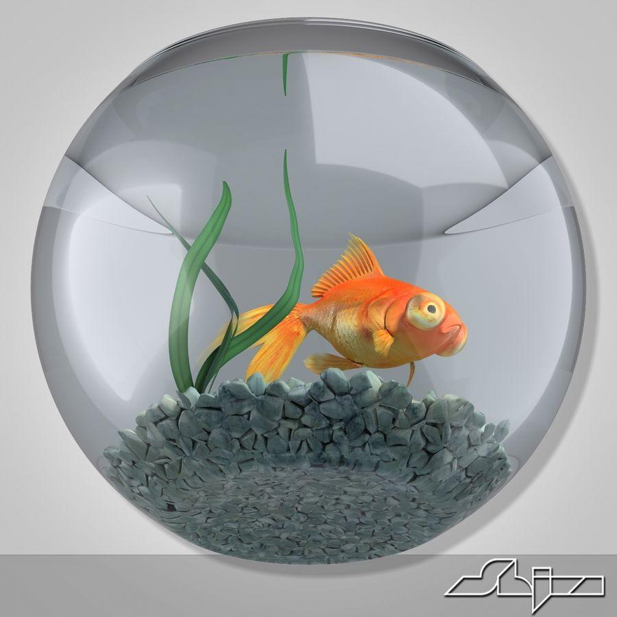 Aquarium with gold fish royalty-free 3d model - Preview no. 4