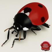 Ladybug Pose7 3d model