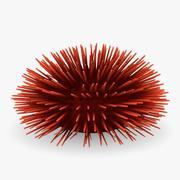 sea urchin4 3d model