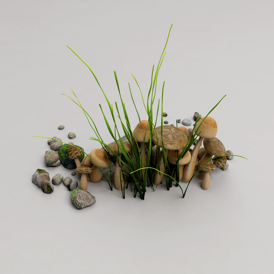 Champignons royalty-free 3d model - Preview no. 4