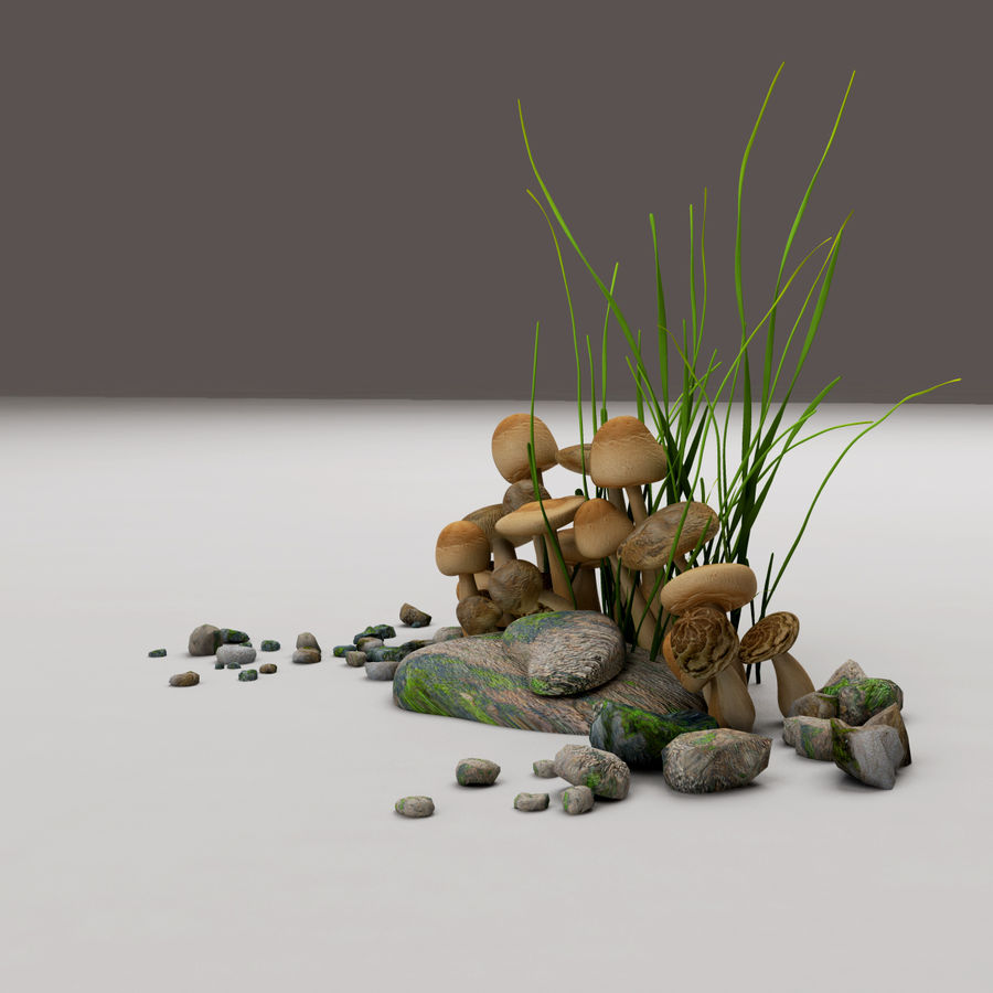 Champignons royalty-free 3d model - Preview no. 5