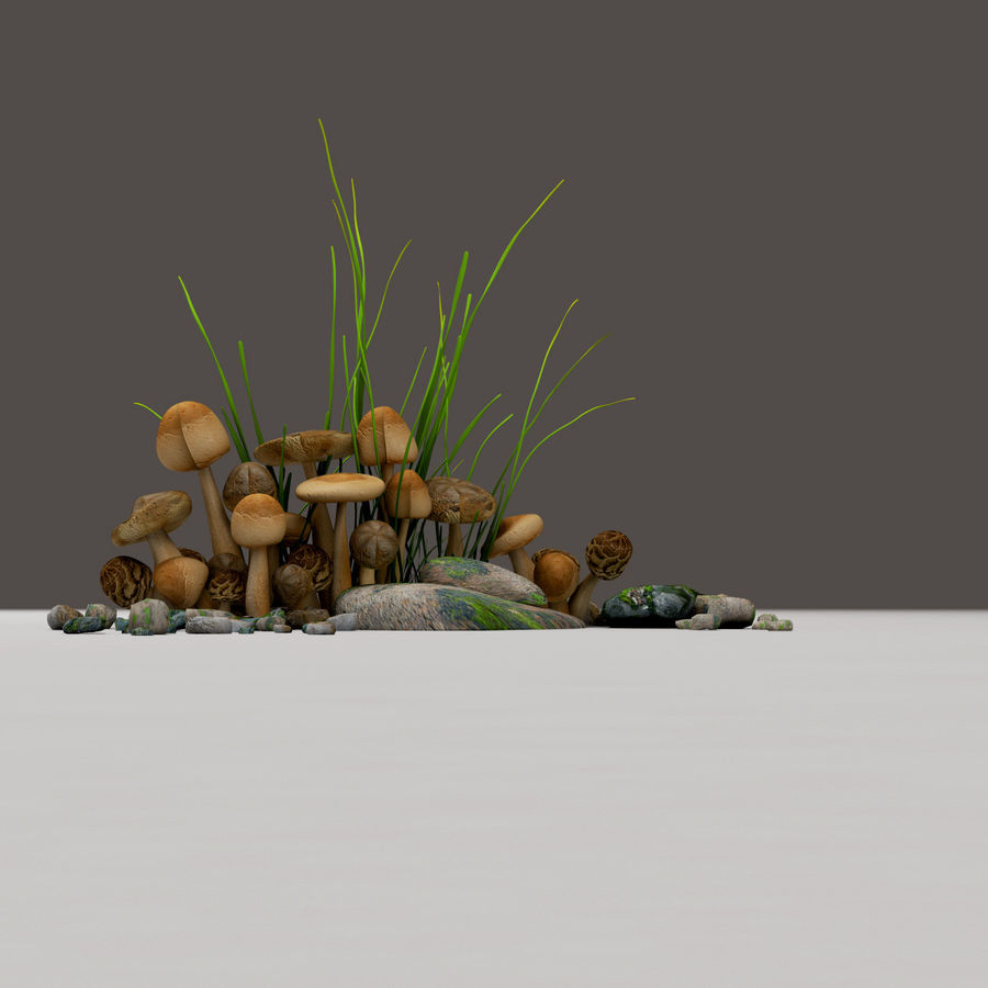 Grzyby royalty-free 3d model - Preview no. 2