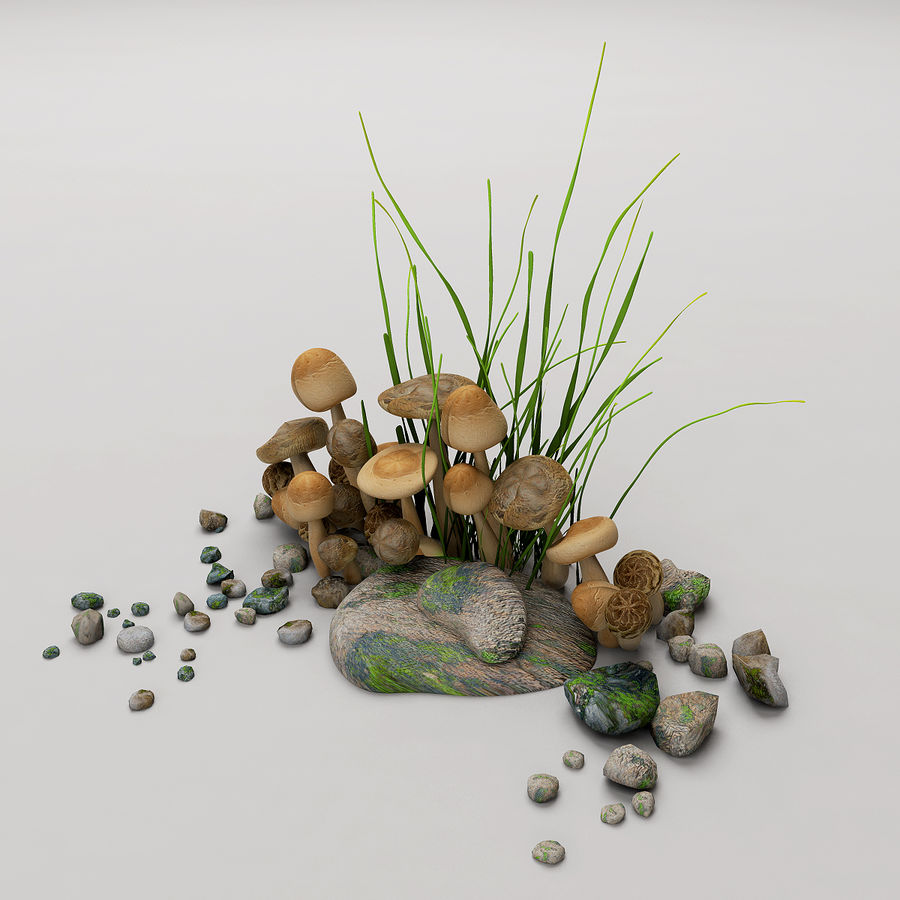 Champignons royalty-free 3d model - Preview no. 1