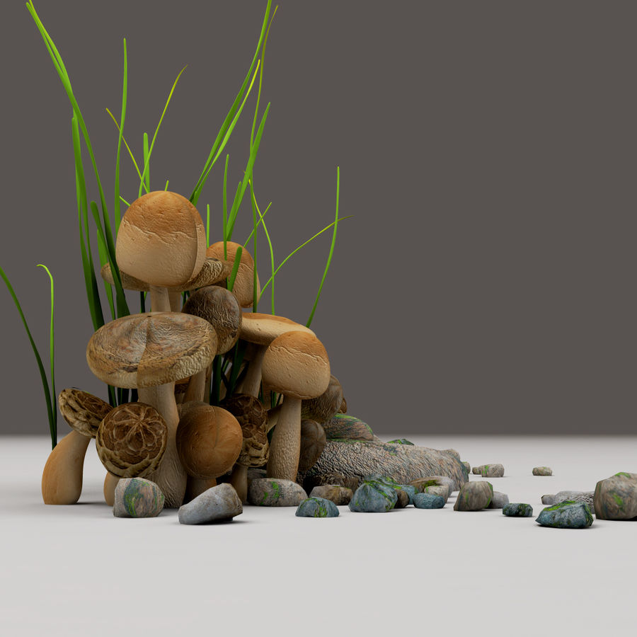 Champignons royalty-free 3d model - Preview no. 6