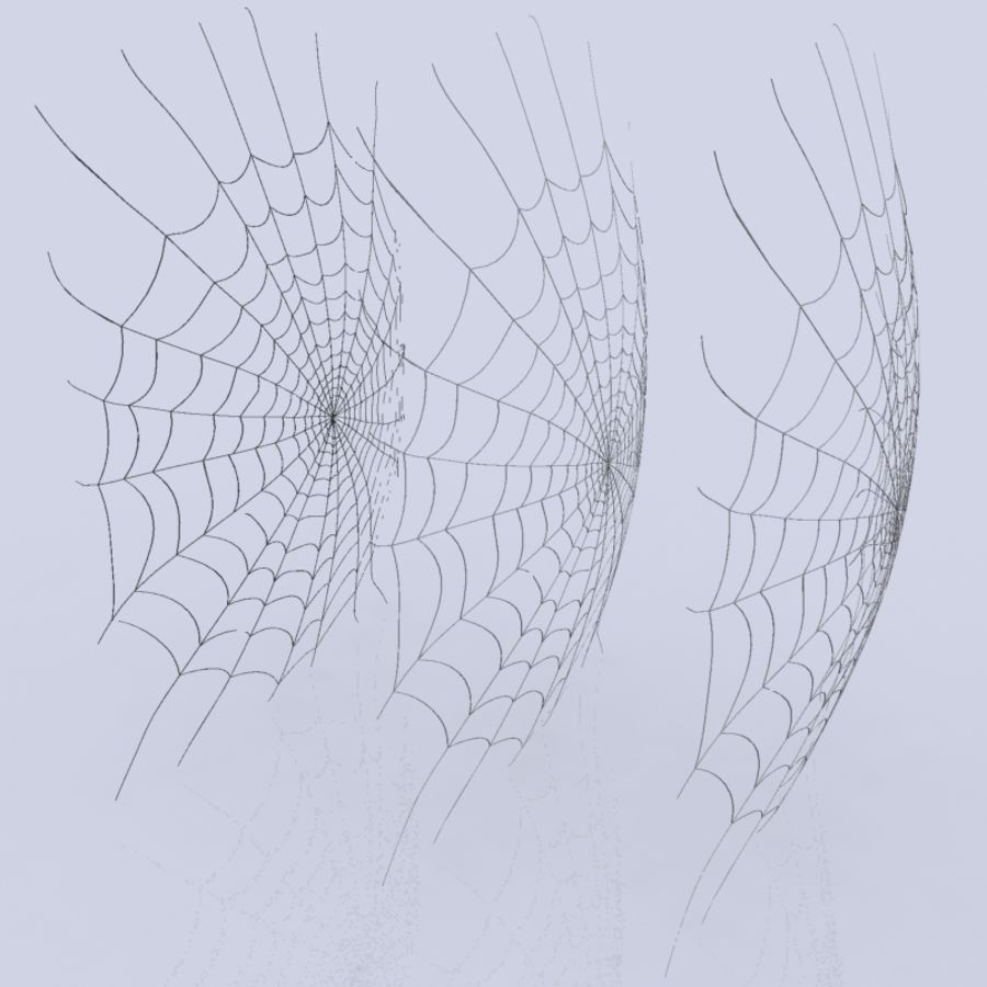 Spider Web royalty-free 3d model - Preview no. 6