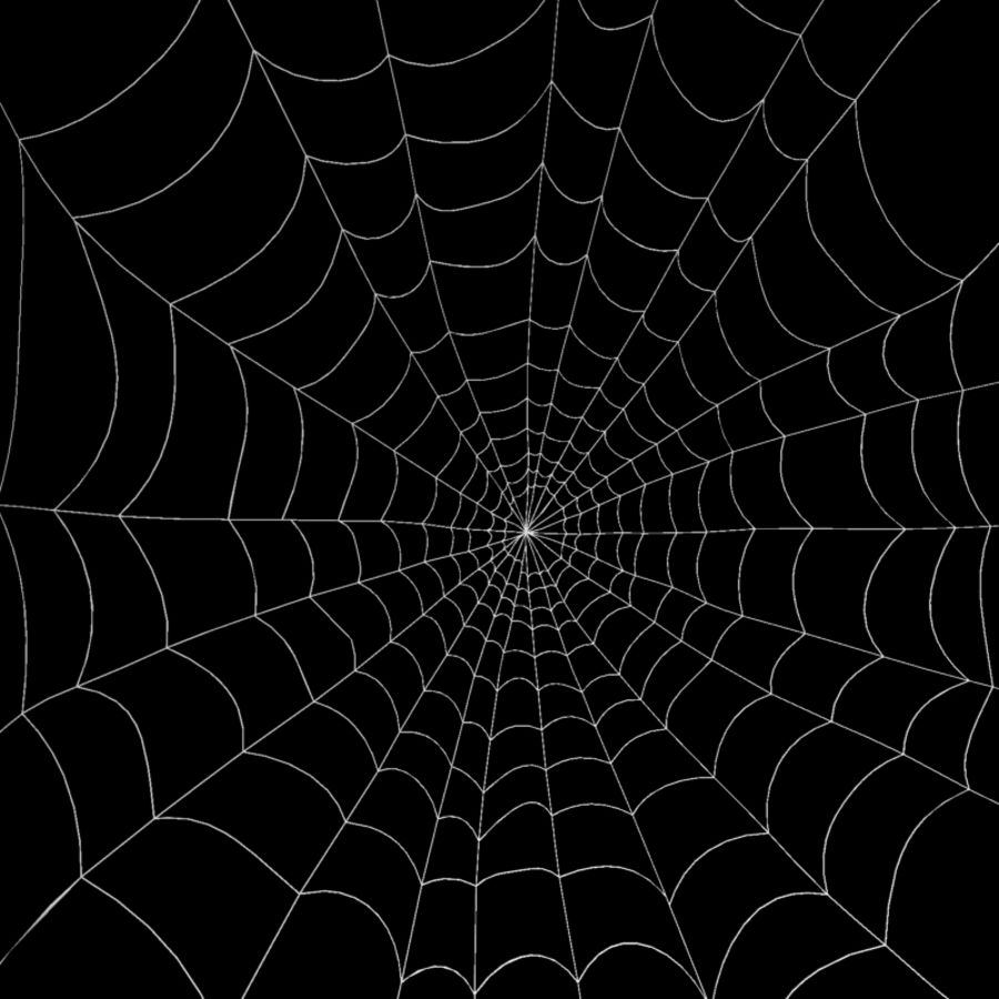 Spider Web royalty-free 3d model - Preview no. 2