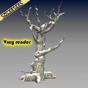 雪の冬の木 3d model