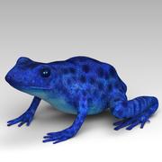 Frog 4 3d model