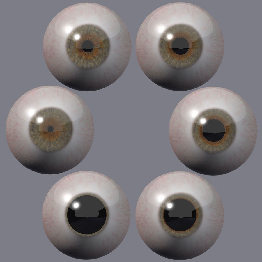 Realistic 3d Eyes royalty-free 3d model - Preview no. 3