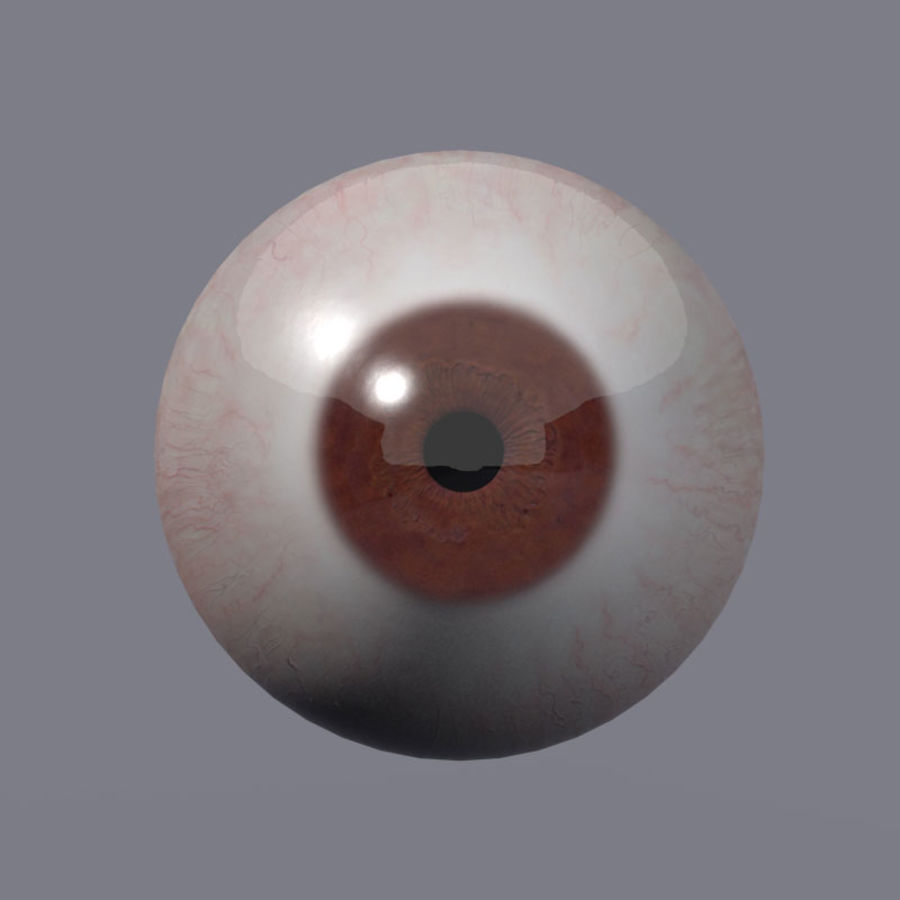 Realistic 3d Eyes royalty-free 3d model - Preview no. 5