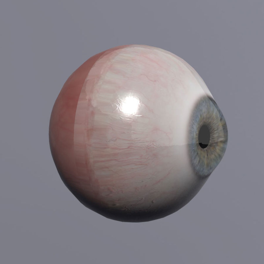 Realistic 3d Eyes royalty-free 3d model - Preview no. 7