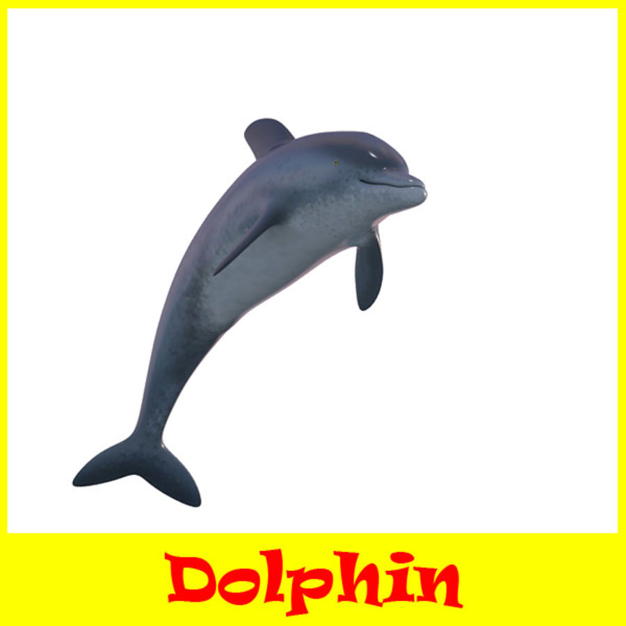Delphin royalty-free 3d model - Preview no. 1