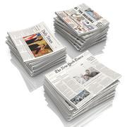 Gazeta 3d model