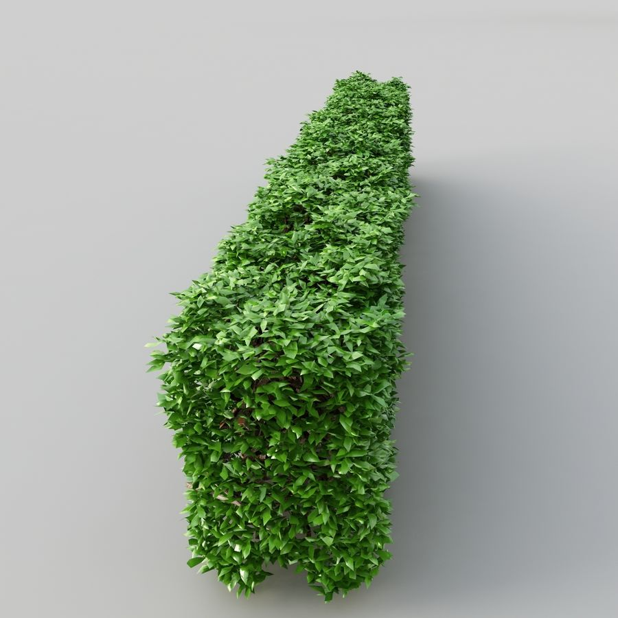 Hedge royalty-free 3d model - Preview no. 3