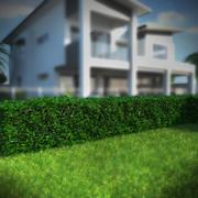 树篱 3d model