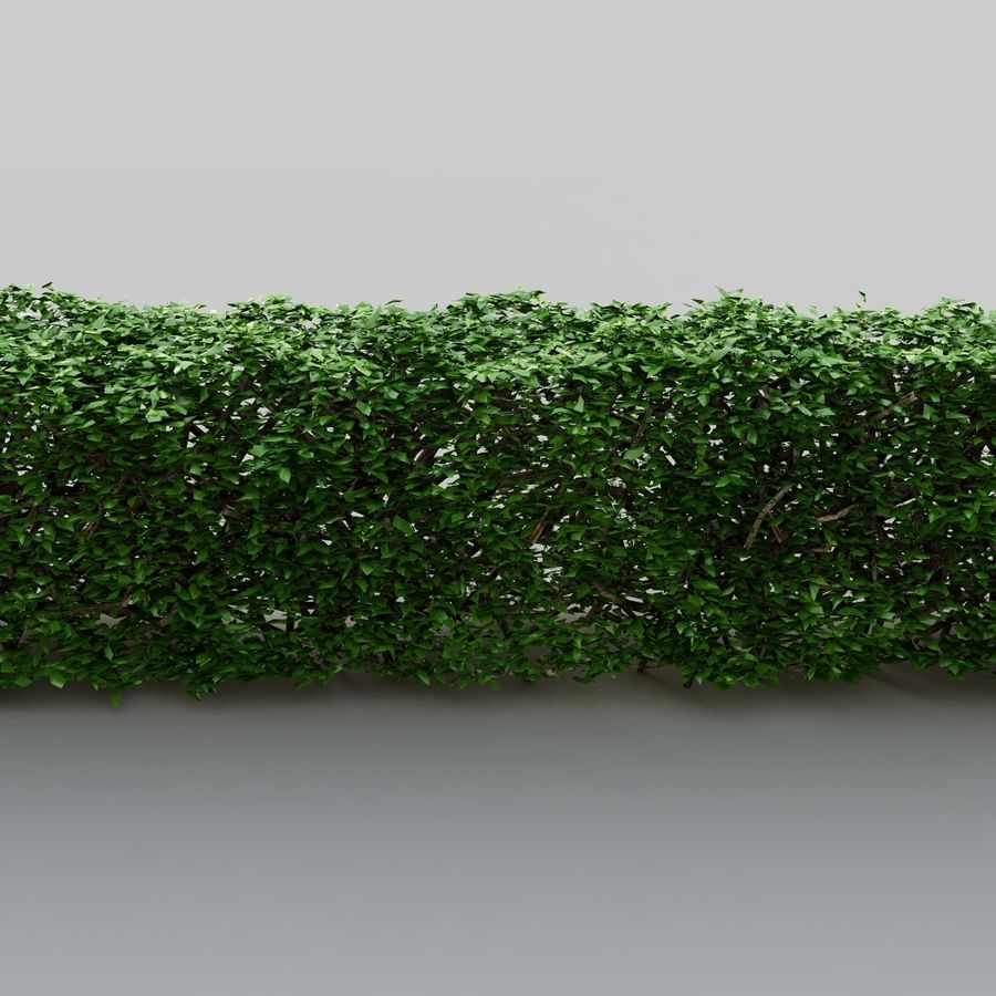 Hedge royalty-free 3d model - Preview no. 5
