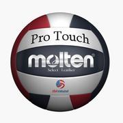 Molten Volleyball 3d model