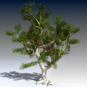 Apfelbaum 3d model