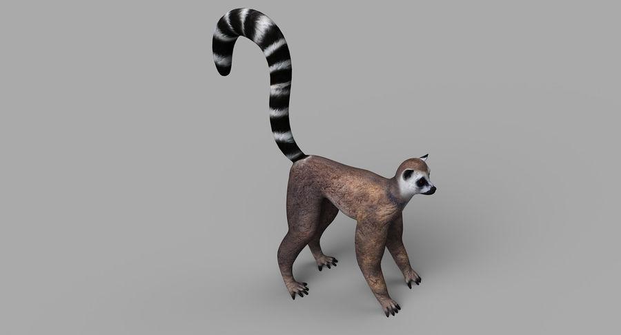 Lemur royalty-free 3d model - Preview no. 5