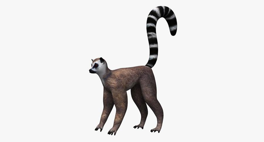 Lemur royalty-free 3d model - Preview no. 2
