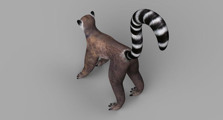 Lemur royalty-free 3d model - Preview no. 7
